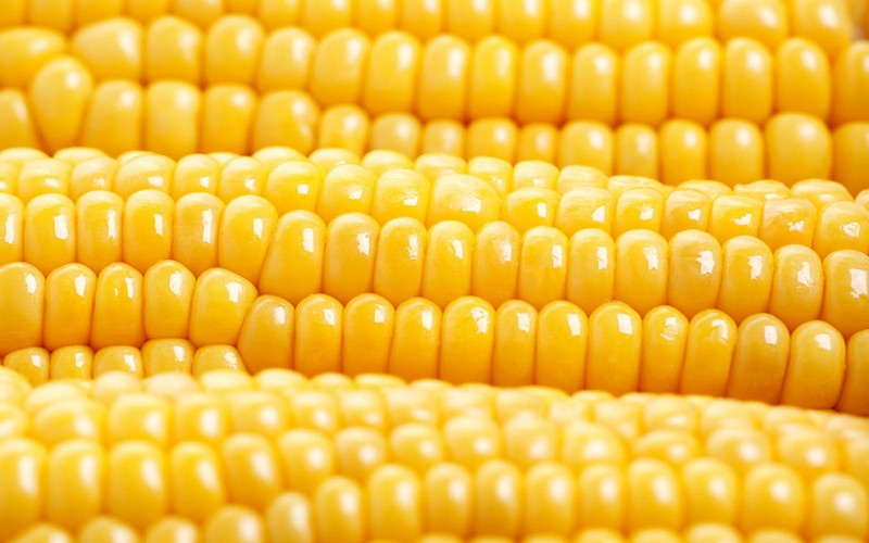 Understanding high fructose corn syrup