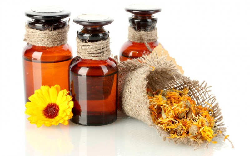 Can echinacea prevent the common cold?