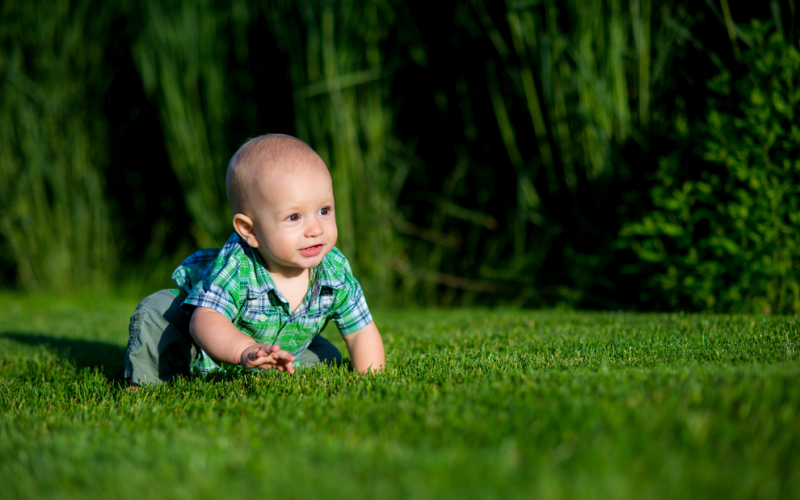 QOD: How do I keep my child safe from insect bites?