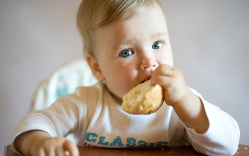 QOD: Does the timing of introducing foods with gluten impact the chances that my child will develop celiac disease?