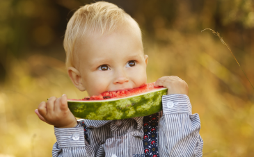 Is there a toddler low-fat diet?