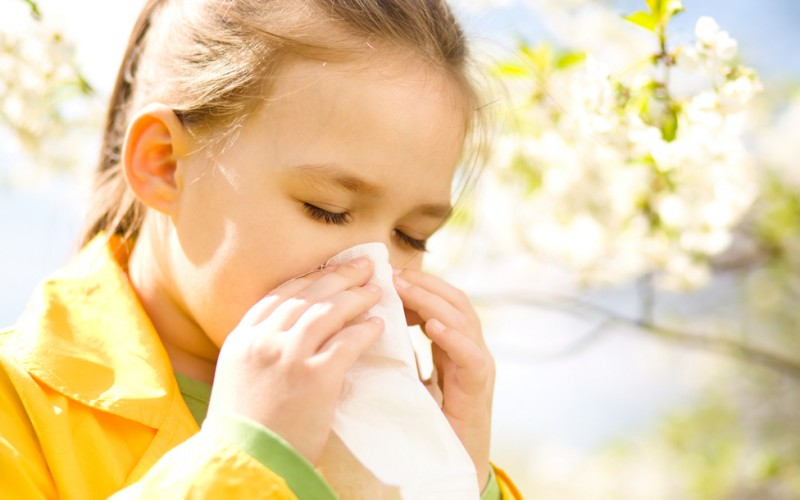 Can my toddler take allergy medicine?