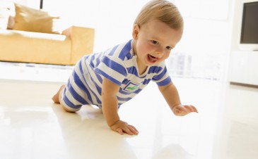 Baby Development: Your 12 month, 1 week old